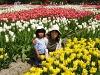 090502_tulipfair30